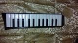 Melodica Piano 26 Hohner. Alemania - foto