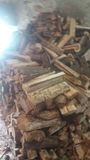 Leña seca - foto