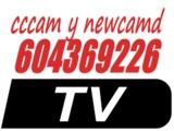 cccam newcamd garantia 1 año - foto