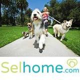 Trabajo cuidador de perros RE395 - foto
