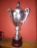 Copa trofeo laton y madera con tapa - foto