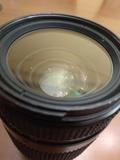 Nikon 35-70 AF 2.8 - foto