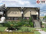 CHIRINGUITOS EN BREZO REF 161 - foto