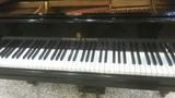 Tecnico de pianos - foto