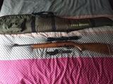 carabina calibre 22 - foto