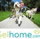Cuidamos tus mascotas RF991 - foto