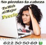 DESDE 190  DISEÑO WEB * * * * * - foto
