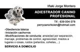 ADIESTRADOR CANINO(SERVICIO A DOMICILIO) - foto