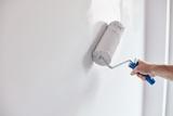 se pintan casas, economico - foto