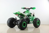 MEGA RAPTOR X_ATV - MINI QUAD 125 4 TIEMPOS - foto