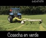 COSECHADORA DE CEREAL - foto