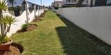 Mantenimientos jardines en marbella - foto