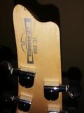 Guitarra eléctrica IBANEZ ICEMAN IC-200 - foto