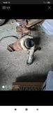 turbo  motor 2.0 hdi psa - foto