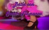 APRENDE BAILE FLAMENCO Y SEVILLANAS - foto