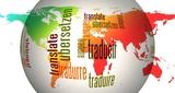 Traductores nativos inglés o francés - foto