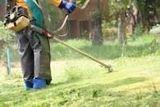 Jardinero (mantenimiento de jardines) - foto