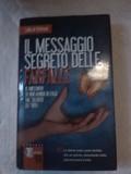 IL MESSAGIO SEGRETO DELLE FARFALLE.  - foto