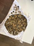 monedas colección pesetas - foto
