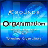 Organimation Yamaha MOTIF, MONTAGE-MODX - foto
