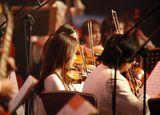 Pianistas, violinistas y mas musicos - foto