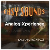 Analog Xperience YAMAHA MONTAGE y MODX - foto