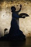 Flamenco puro - foto