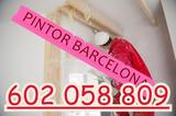 Pintores Profesionales Barcelona - foto