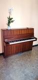 Piano Ronisch de madera mate serie delux - foto