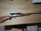 rifle calibre del 22 - foto