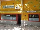 PELUQUERÍA CANINA - foto