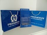 Revistero y bolsas Pioneer - foto