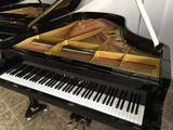 Piano Cola Yamaha C3 Renovado. trans inc - foto