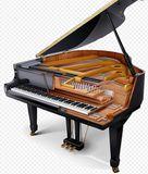 Tecnico afinador pianos - foto