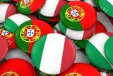 Traductora italiano y portugues - foto