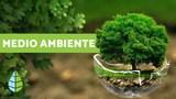 DVA Servizos Medioambientais  ambiente - foto