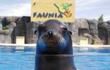 Warner, Parque de atracciones, zoo... - foto