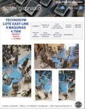 LOTE  GIMNASIO TECHNOGYM EASY LINE - foto