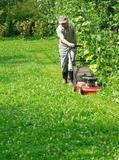 equipo de jardineros - foto