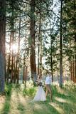 Fotógrafo, boda, bautizos,etc - foto