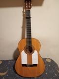 guitarra flamenca - foto