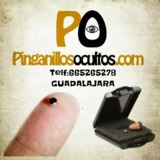 t7f. Pinganillos - foto