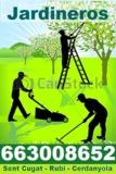 Economicos Jardineros 663008652 - foto