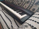 Piano Casio Privia Px160 88 teclas - foto