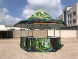 Carpa plegable hexagonal 2x2x2 - foto