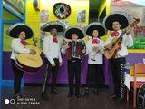 Mariachi Galicia es Mexico, en coruña - foto