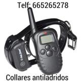 ghx. Collar de adiestramiento perros - foto
