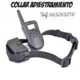 9bq. Collar de adiestramiento perros - foto