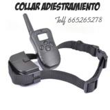 5mqk. Collar de adiestramiento perros - foto