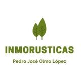 FINCA DE OLIVOS Y CHAPARROS.  - foto